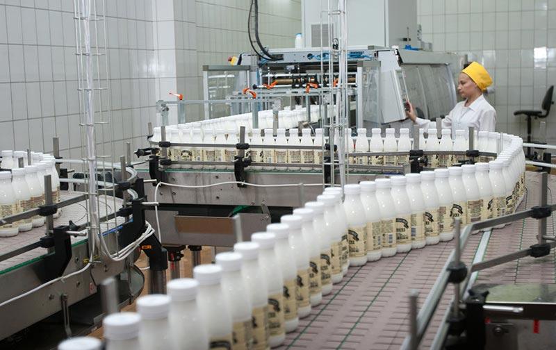 Молочное производство