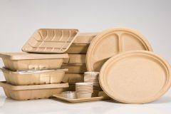 Производство бумажной посуды как бизнес