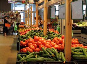 Овощехранилище как бизнес