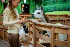 Как открыть контактный зоопарк