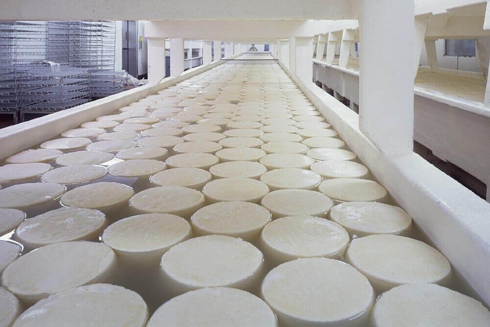 Технология производства кисломолочного сыра