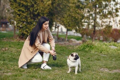 Если вы любите животных и не прочь на этом заработать, то выгул собак станет отличным вариантом для начала своего бизнеса. Заботьтесь о домашних питомцах, гуляйте с ними в удовольствие, к тому же получается за это деньги. Ведь тех, у кого не хватает времени выгуливать своих любимцев много, стоит только найти таких людей и правильно все организовать. О том, как это сделать, с чего начать бизнес и как на этом зарабатывать, читайте подробно в статье. Как можно заработать на бизнес идее по выгулу собак Выгул чужих питомцев за деньги пользуется популярностью в странах Европы и США. Но теперь и у нас такая услуга набирает обороты. Все больше занятых людей, доверяют своих любимцев профессиональным выгульщиком. Основная их задача – выгул собак. Их нужно выгуливать 2 раза в день, вечером и утром. Обычно утренняя прогулка оплачивается в 1,5 раза выше, чем вечерняя. Минимальное время, которое нужно проводить с животным на улице – полчаса. Кроме прогулок с животными, можно оказывать и дополнительные услуги. Например, оставлять животных у себя дома на несколько дней. Это уже будет считаться передержкой. В то время, когда собака живет у вас дома, вы отвечаете за неё, гуляете с ней, кормите и ухаживаете. Некоторые собаки, помимо обычной прогулки, нуждаются в дрессировке. Эта услуга оплачивается отдельно, а время для выгула животного в таком случае увеличивается. В зависимости от того, сколько у вас подопечных и какие услуги предоставляете, заработок будет отличаться. Но даже при небольших показателях вы сможете неплохо заработать, проводя время с любимыми животными. Нужны ли стартовые инвестиции Вам потребуется вложиться на рекламу в интернете, если хотите быстрее раскрутиться и найти больше клиентов. Также желательно зарегистрировать бизнес. Подробнее о вариантах оформления поговорим ниже. В целом на раскрутку и регистрацию своего дела понадобится около 20 000 руб. Если же вы не планируете уделять этому все время, а рассматриваете как дополнительный заработок в свободное время, т