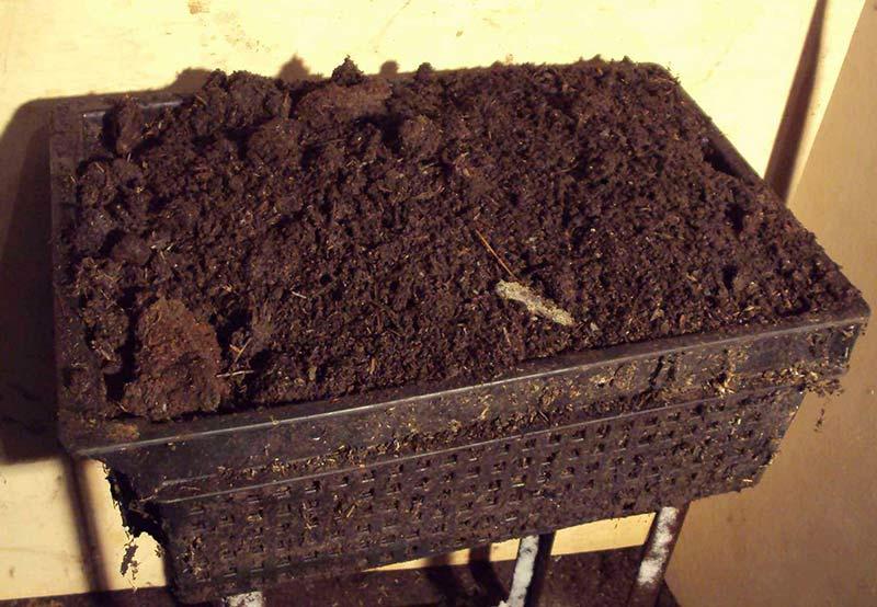 Изображение - Производство биогумуса технология biogumus