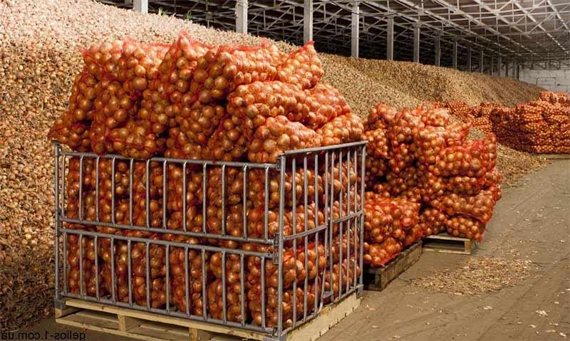 Изображение - Строительство овощехранилищ как бизнес ovoshhi
