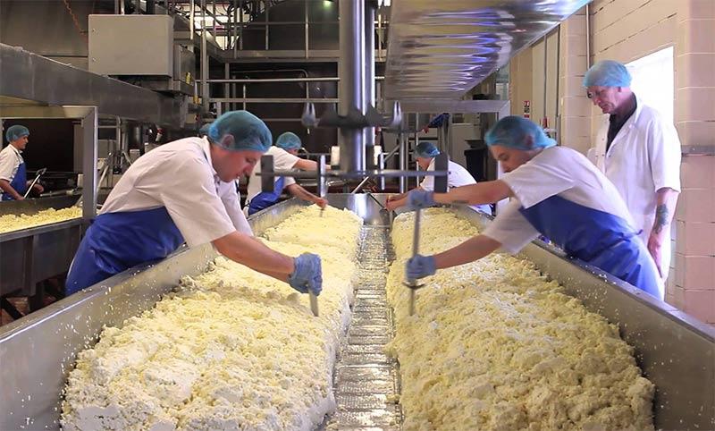 Изготовление сыра